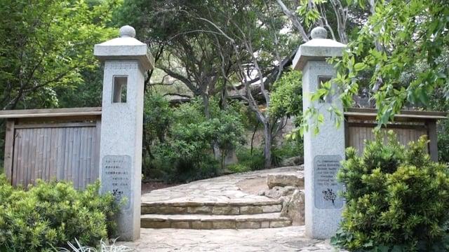 taniguchi-gardens